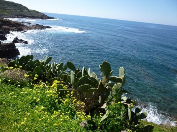 Westkueste Sardiniens
